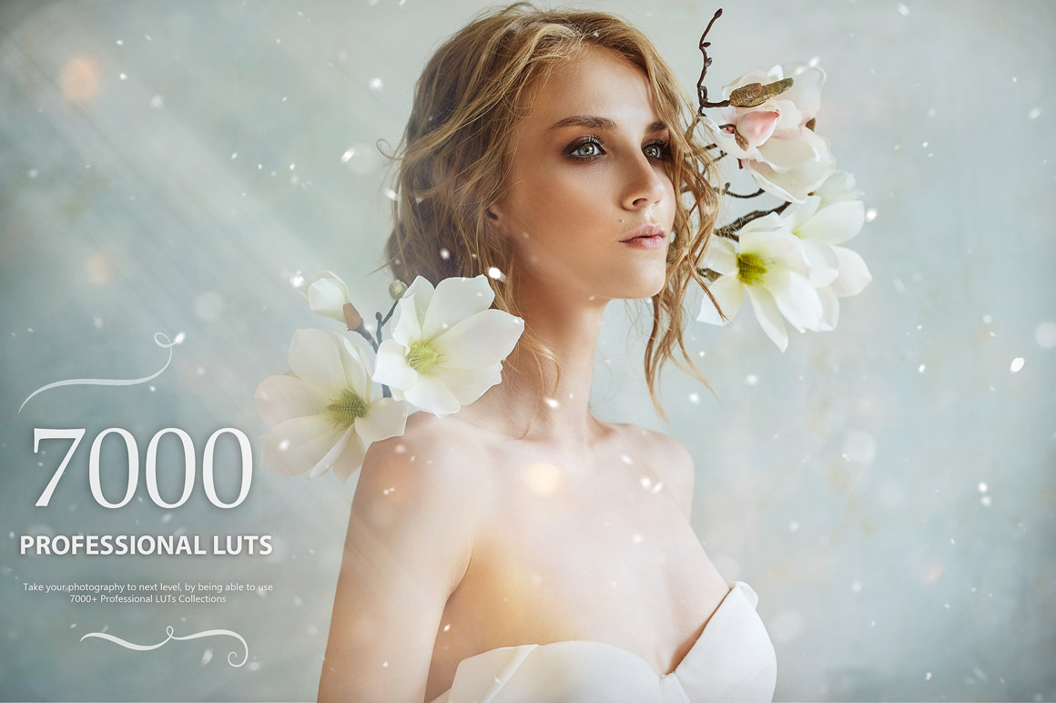 Download 7000+ Professional LUTs