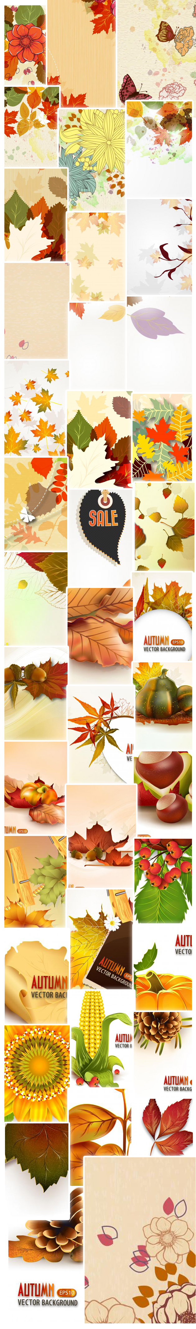 autumn-illustrations-large