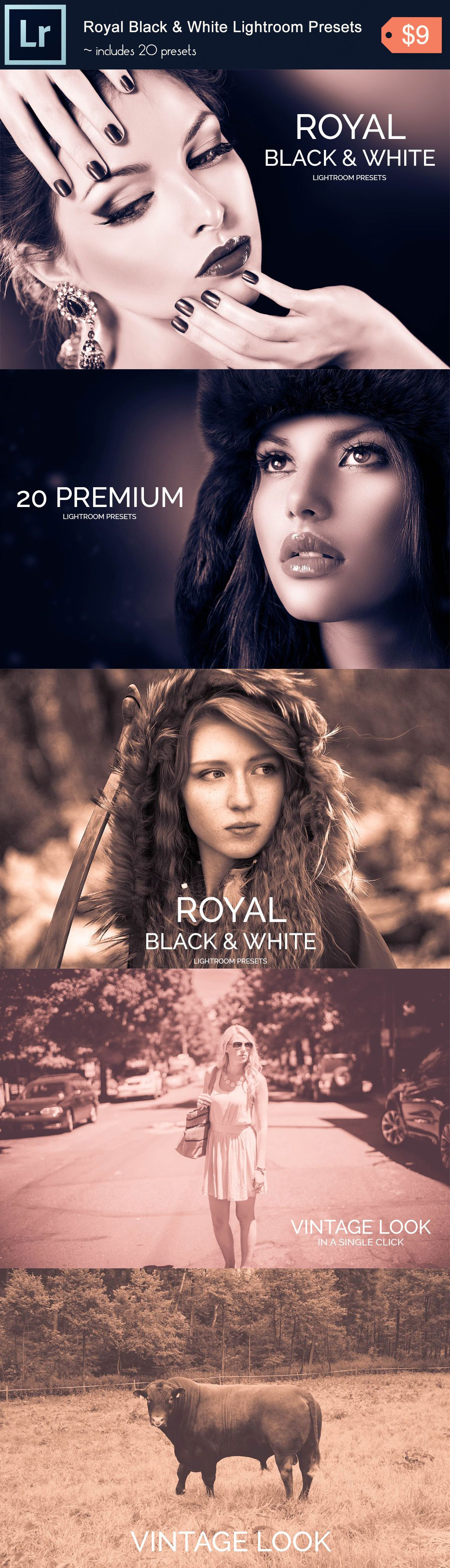20 Royal Black & White Lightroom Presets