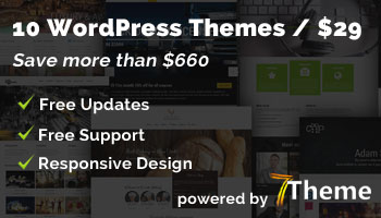 10 Great Looking & Responsive WordPress Themes with Commercial License, only $29