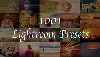 1001 Lightroom Presets with Extended License