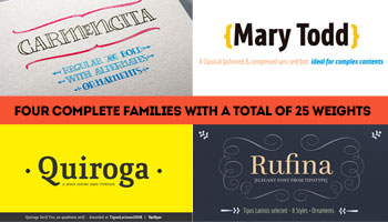 Tipotype Display Bundle - 4 Fonts with 25 Weights - only $19