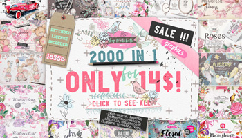 2000 Graphics in 1 Bundle - only $14