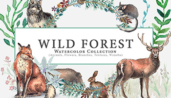 Wild Forest Watercolor Collection