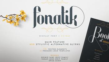 Fonatik Display font + Extras