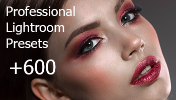 Get 655 Professional Lightroom Presets