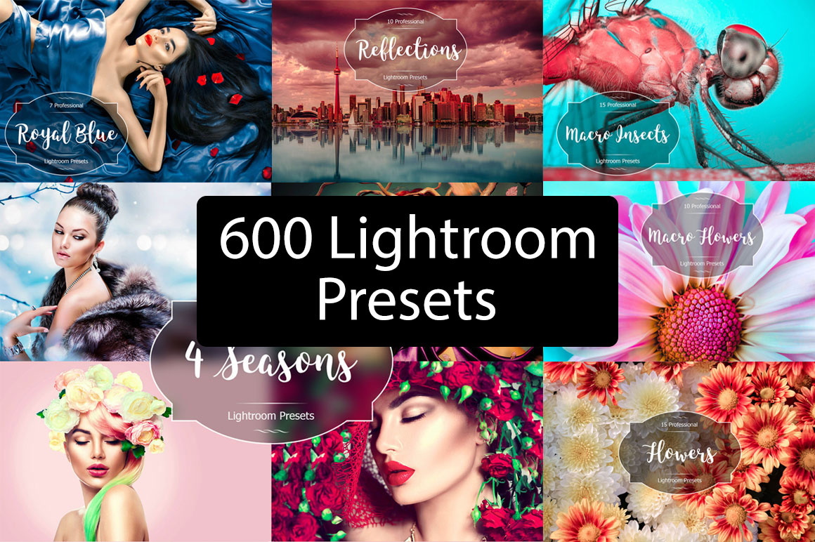 Get 655 Professional Lightroom Presets