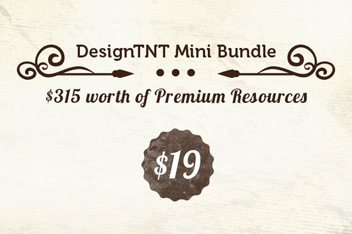 DesignTNT Mini Bundle - $315 worth of Vectors, Textures, Brushes - Only $19