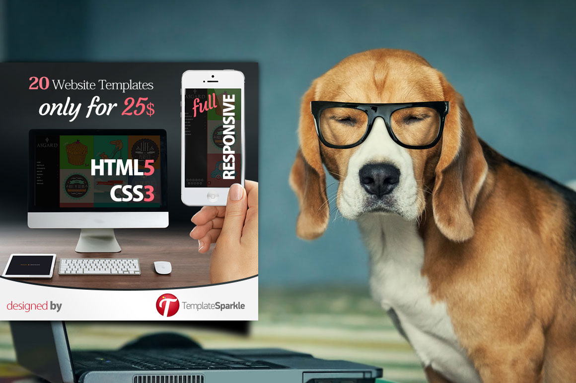Get 20 Top-Quality Creative HTML5, CSS3, Responsive Website Templates